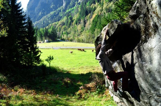 camper, mucche, climber nell'ordine :-)